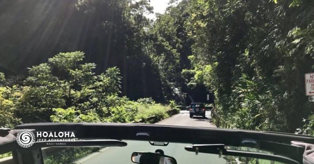 best stops on the road to hana hoaloha jeep adventures