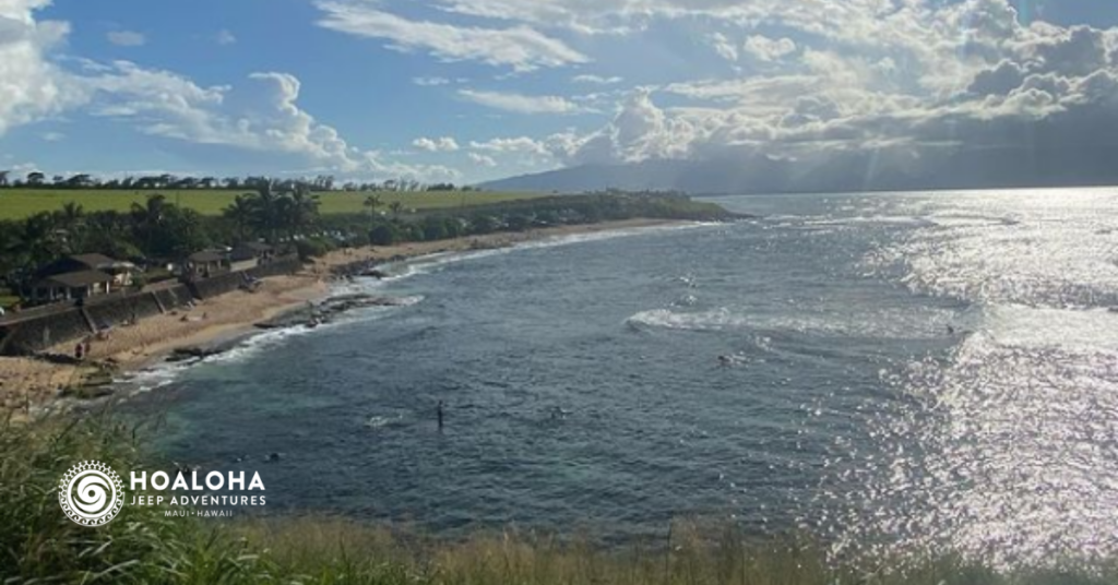 Must do in Maui - Hoaloha Jeep Adventures
